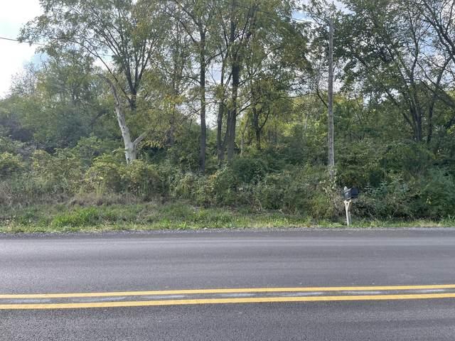 Vacant S Creme Road, Homer Glen, IL 60491 (MLS #11236538) :: John Lyons Real Estate