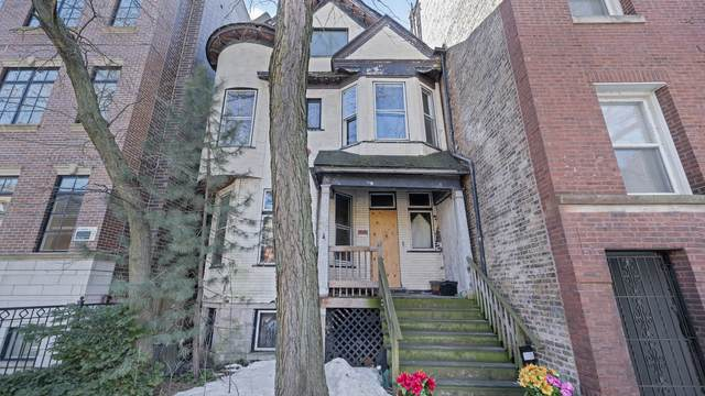 723 W Buckingham Place, Chicago, IL 60657 (MLS #11236714) :: Touchstone Group