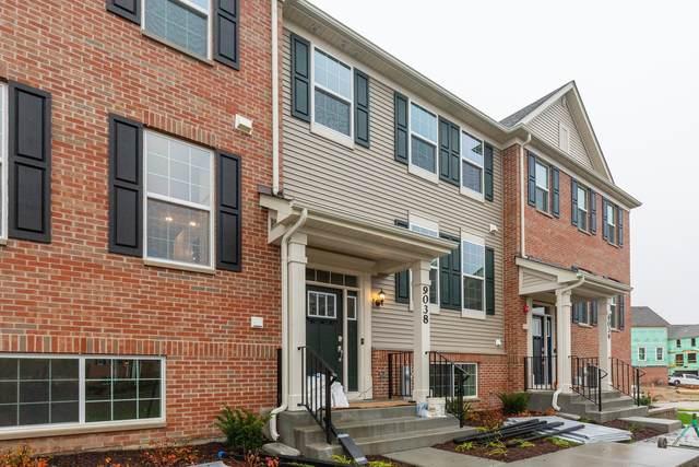 8954 Dolby Street #0, Huntley, IL 60142 (MLS #11236888) :: John Lyons Real Estate