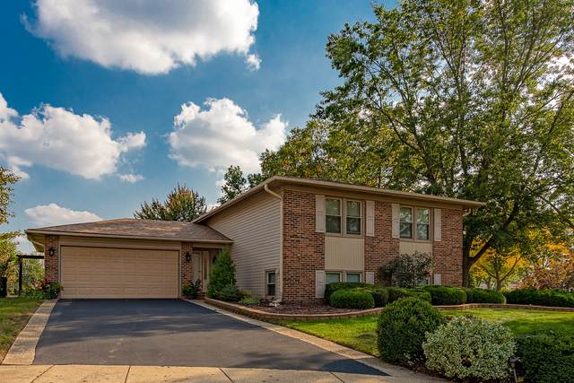 939 Jackson Circle, Elk Grove Village, IL 60007 (MLS #11236941) :: The Wexler Group at Keller Williams Preferred Realty