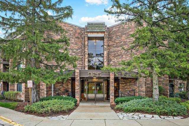 925 Spring Hill Drive #205, Northbrook, IL 60062 (MLS #11237276) :: Littlefield Group