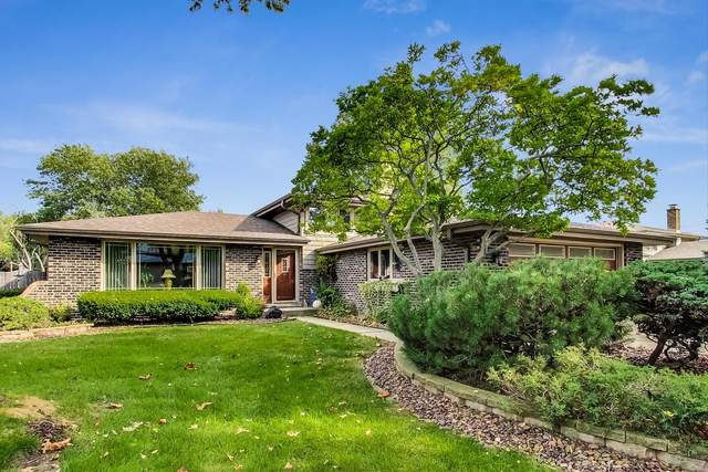 14201 Timothy Drive, Orland Park, IL 60462 (MLS #11237463) :: RE/MAX IMPACT