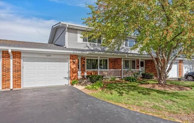 120 Queens Court, Schaumburg, IL 60193 (MLS #11237780) :: John Lyons Real Estate