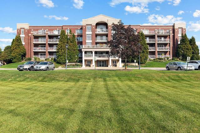 7091 W Touhy Avenue #401, Niles, IL 60714 (MLS #11237836) :: The Wexler Group at Keller Williams Preferred Realty