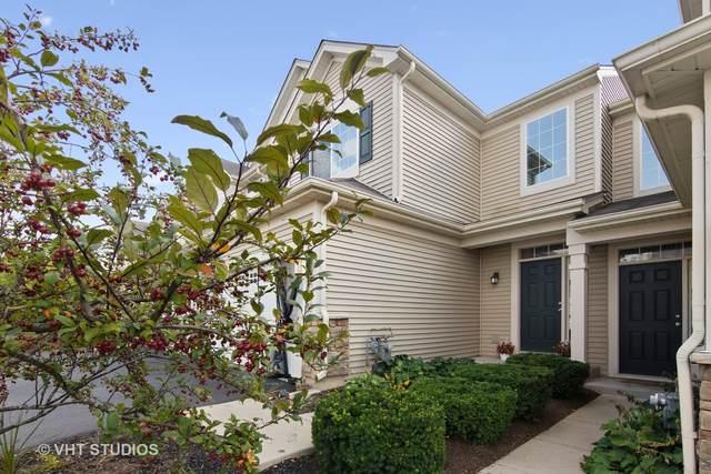 445 S Jade Lane, Round Lake, IL 60073 (MLS #11237880) :: Littlefield Group