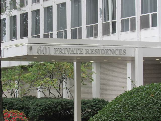 601 E 32ND Street #1111, Chicago, IL 60616 (MLS #11237915) :: The Wexler Group at Keller Williams Preferred Realty