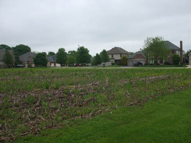 Lot 86 Blue Lake Circle W, St. Charles, IL 60175 (MLS #11238026) :: The Wexler Group at Keller Williams Preferred Realty