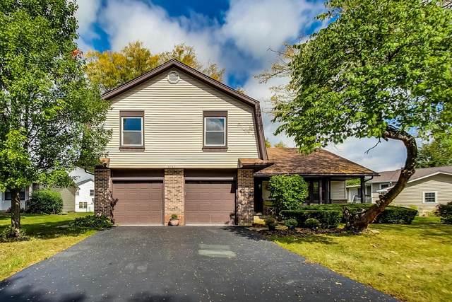 1067 Tennessee Lane, Elk Grove Village, IL 60007 (MLS #11238163) :: The Wexler Group at Keller Williams Preferred Realty