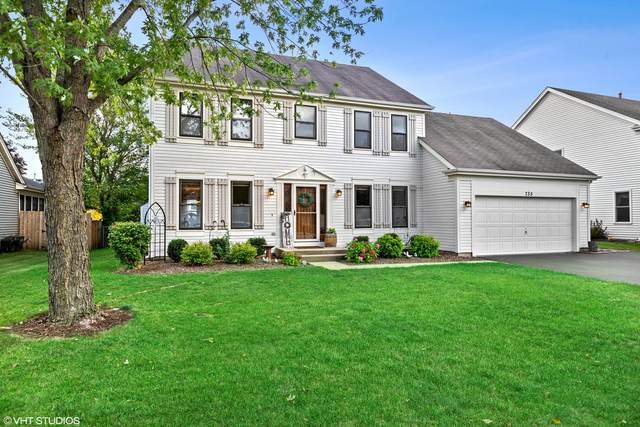 735 Cimarron Drive, Cary, IL 60013 (MLS #11238179) :: Littlefield Group
