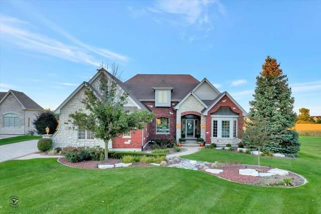 8636 Pine Ridge Drive, Frankfort, IL 60423 (MLS #11238195) :: John Lyons Real Estate