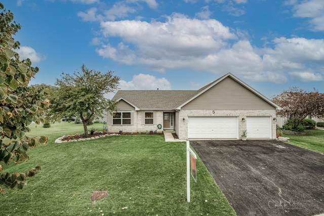5 Danbury Court, Lake In The Hills, IL 60156 (MLS #11238380) :: John Lyons Real Estate