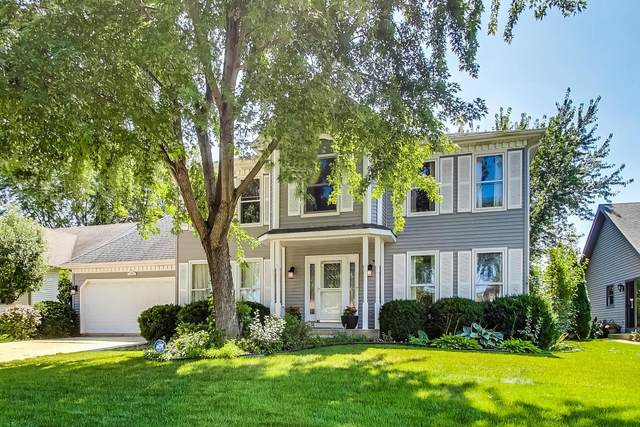 230 Gingerbrook Lane, Bartlett, IL 60103 (MLS #11238396) :: Littlefield Group