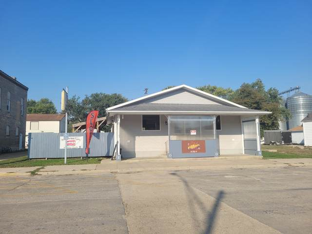 109 Main Street, Leaf River, IL 61047 (MLS #11238610) :: The Wexler Group at Keller Williams Preferred Realty