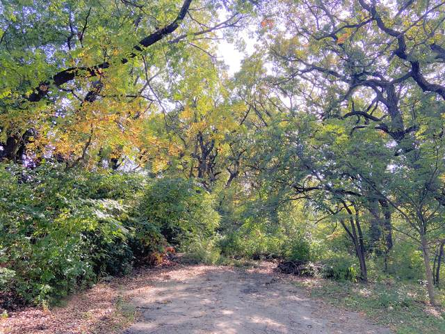 Vacant Hilltop Road, Oakwood Hills, IL 60013 (MLS #11238697) :: Rossi and Taylor Realty Group