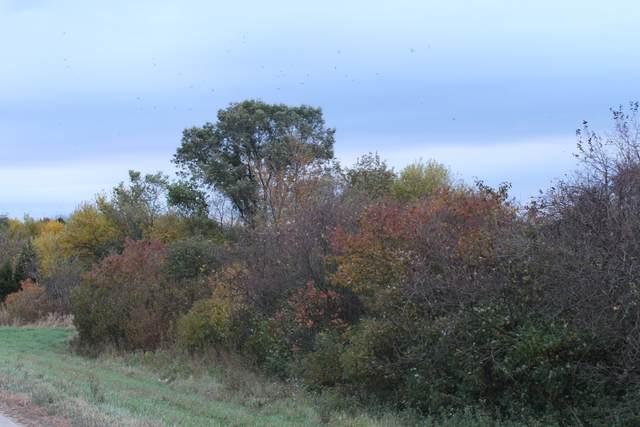 Lot 1 Fabyan Parkway, Elburn, IL 60119 (MLS #11238791) :: Littlefield Group