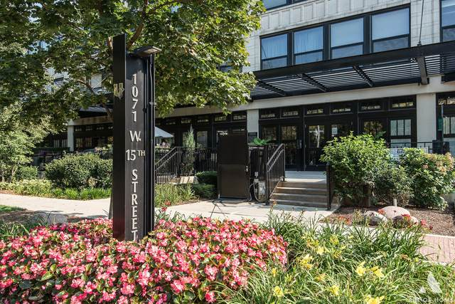 1071 W 15th Street #246, Chicago, IL 60608 (MLS #11238928) :: The Wexler Group at Keller Williams Preferred Realty