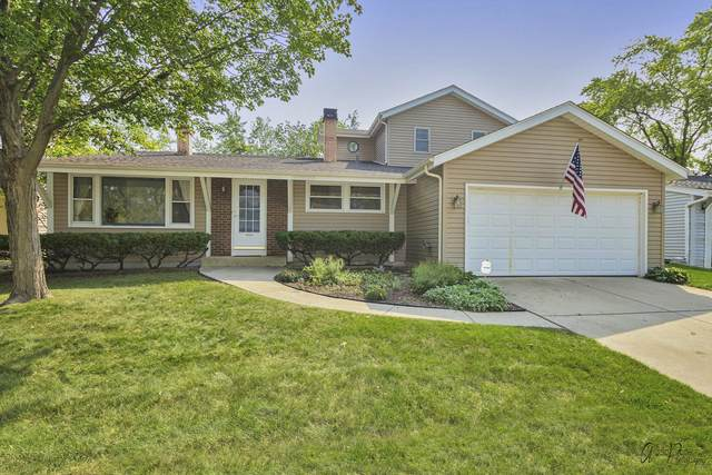 859 Beechwood Road, Buffalo Grove, IL 60089 (MLS #11239004) :: The Wexler Group at Keller Williams Preferred Realty