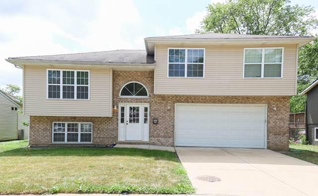 4313 Arlington Drive, Richton Park, IL 60471 (MLS #11239012) :: John Lyons Real Estate