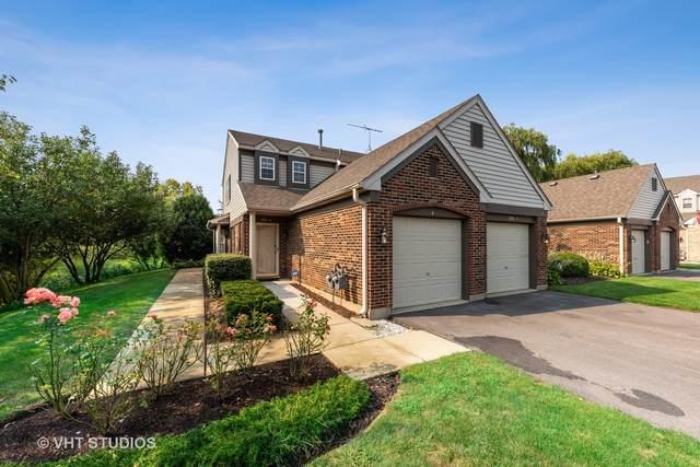 1994 Gary Court B, Schaumburg, IL 60193 (MLS #11239086) :: John Lyons Real Estate
