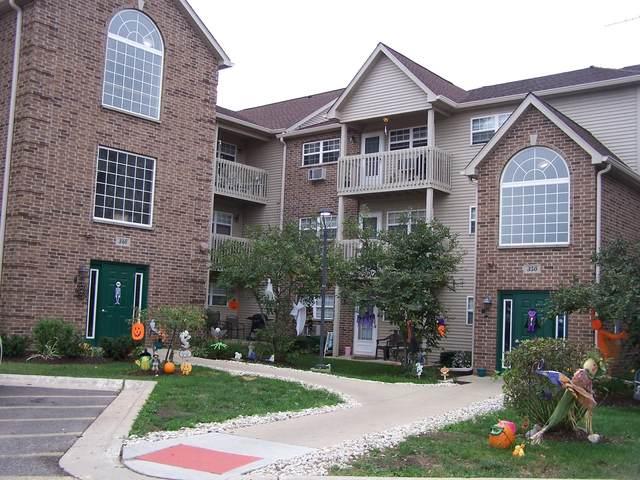 340 Cunat Boulevard 3G, Richmond, IL 60071 (MLS #11239245) :: Littlefield Group