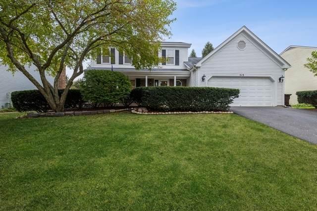 513 Essex Road, Fox River Grove, IL 60021 (MLS #11239439) :: John Lyons Real Estate