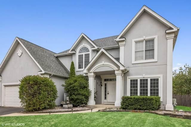 393 Blackfoot Drive, Bolingbrook, IL 60490 (MLS #11239637) :: John Lyons Real Estate