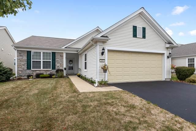 619 Washington Drive, Shorewood, IL 60404 (MLS #11239708) :: Littlefield Group