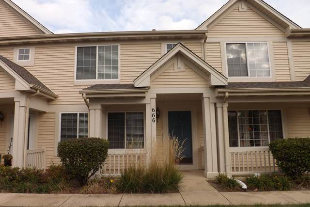 666 Lincoln Station Drive #666, Oswego, IL 60543 (MLS #11239781) :: Littlefield Group