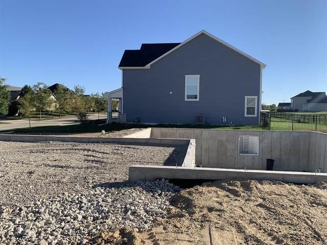 3610 Wetland Drive, Elgin, IL 60124 (MLS #11239928) :: Littlefield Group
