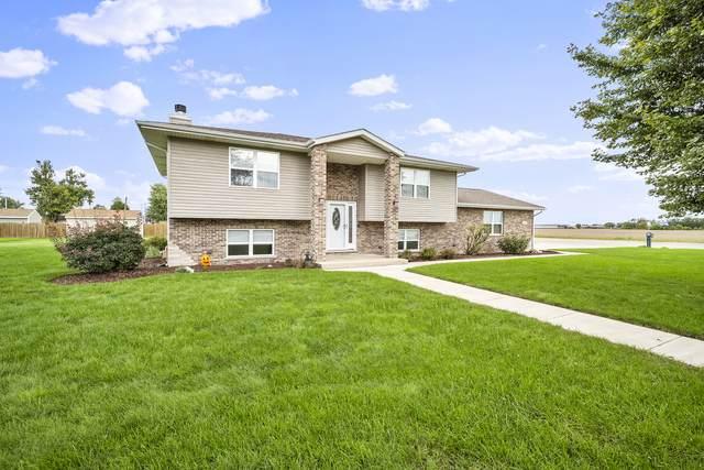 1075 S Illinois Street, Coal City, IL 60416 (MLS #11240162) :: Schoon Family Group
