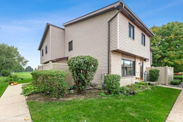 290 E Woodlawn Road, New Lenox, IL 60451 (MLS #11240232) :: The Wexler Group at Keller Williams Preferred Realty