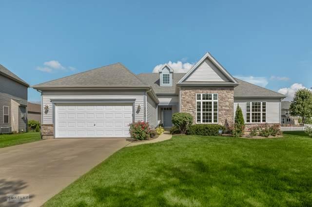 2360 River Hills Lane, Bolingbrook, IL 60490 (MLS #11240313) :: John Lyons Real Estate