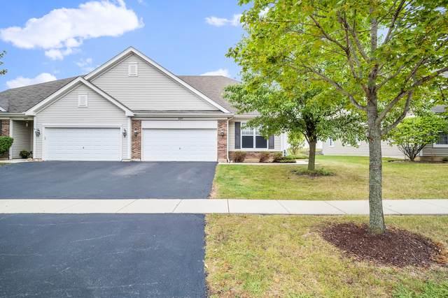 8209 Tremont Lane, Joliet, IL 60431 (MLS #11240359) :: John Lyons Real Estate