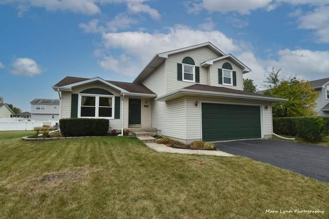 2813 Ruth Fitzgerald Drive, Plainfield, IL 60544 (MLS #11240626) :: Littlefield Group