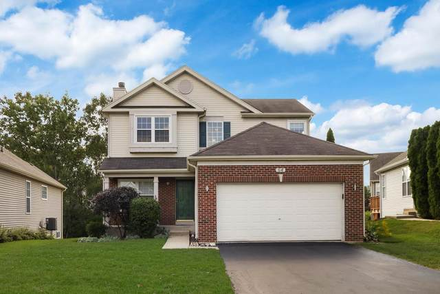 64 Netherlands Drive, Antioch, IL 60002 (MLS #11240728) :: John Lyons Real Estate