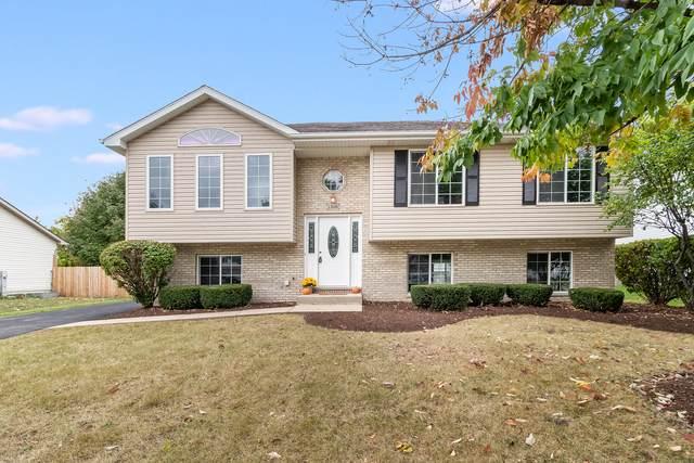 1316 Bassett Drive, Joliet, IL 60431 (MLS #11241027) :: Littlefield Group