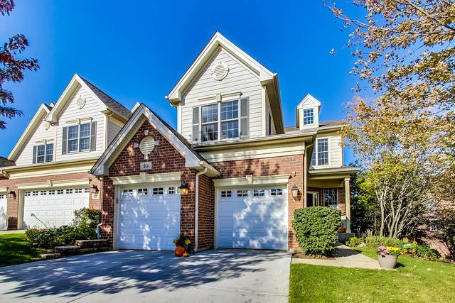 10 Red Tail Drive, Hawthorn Woods, IL 60047 (MLS #11241032) :: Ryan Dallas Real Estate