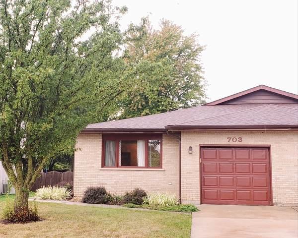 703 S Raven Road, Shorewood, IL 60404 (MLS #11241250) :: Littlefield Group