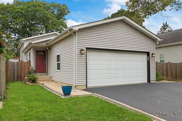 33624 N Idlewild Drive, Grayslake, IL 60030 (MLS #11241451) :: John Lyons Real Estate