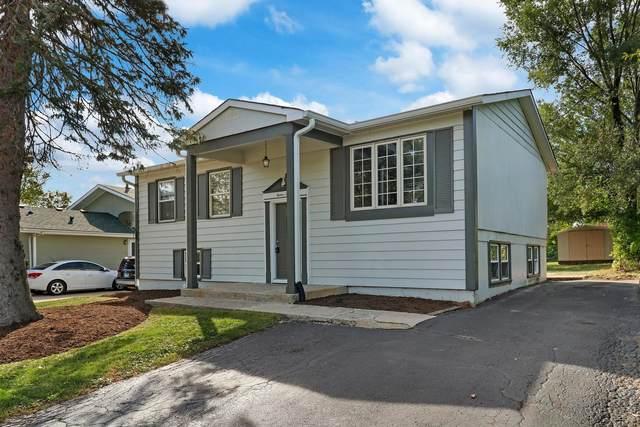 1210 Lotus Drive, Round Lake Beach, IL 60073 (MLS #11241595) :: John Lyons Real Estate