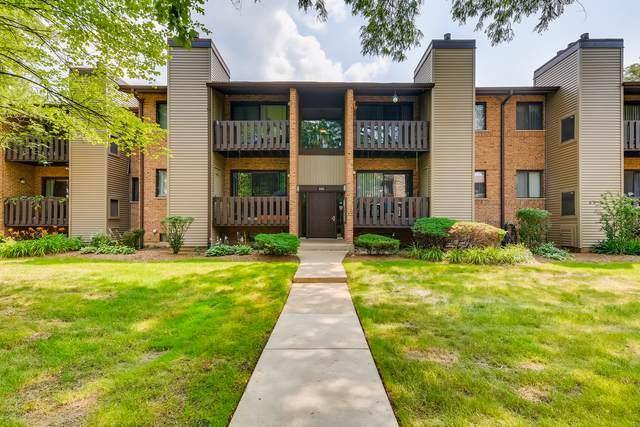 320 Sheridan Drive 1C, Willowbrook, IL 60527 (MLS #11241603) :: Littlefield Group