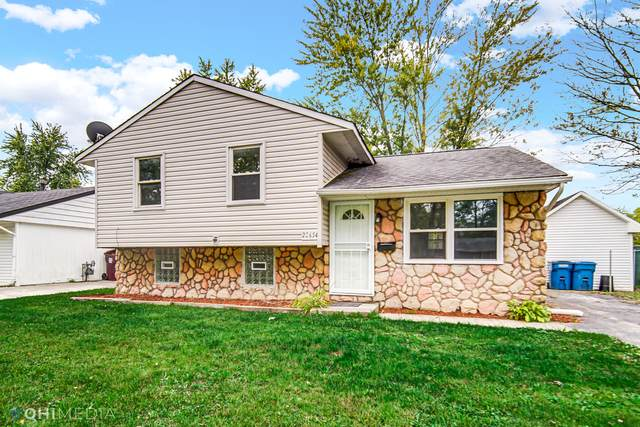 22654 Brookwood Drive, Sauk Village, IL 60411 (MLS #11241631) :: John Lyons Real Estate