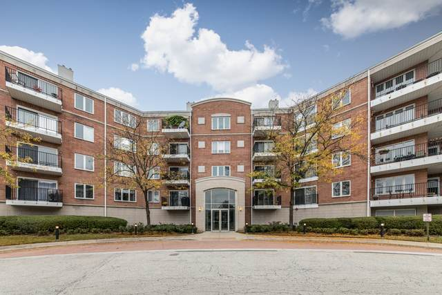 451 Town Place Circle #508, Buffalo Grove, IL 60089 (MLS #11241659) :: The Wexler Group at Keller Williams Preferred Realty