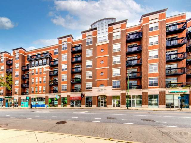 1935 S Archer Avenue #320, Chicago, IL 60616 (MLS #11241807) :: Touchstone Group