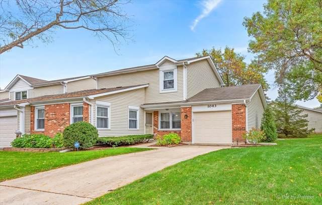 1043 Colony Lake Drive, Schaumburg, IL 60194 (MLS #11241944) :: Carolyn and Hillary Homes