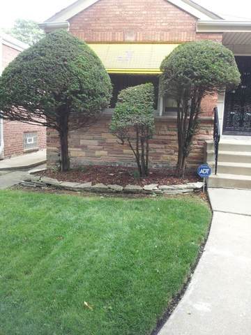 8855 S Luella Avenue, Chicago, IL 60617 (MLS #11242334) :: The Wexler Group at Keller Williams Preferred Realty