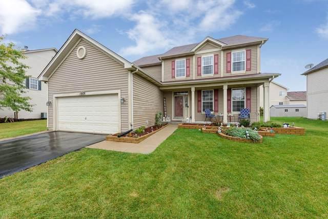 1013 Plaintain Drive, Joliet, IL 60431 (MLS #11242339) :: John Lyons Real Estate
