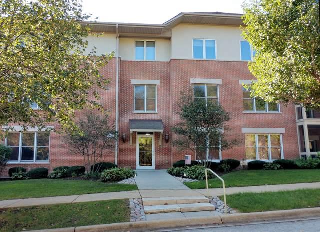 10 Ford Street #207, Geneva, IL 60134 (MLS #11242409) :: The Wexler Group at Keller Williams Preferred Realty