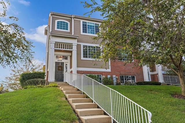 8938 Disbrow Street, Huntley, IL 60142 (MLS #11242568) :: John Lyons Real Estate
