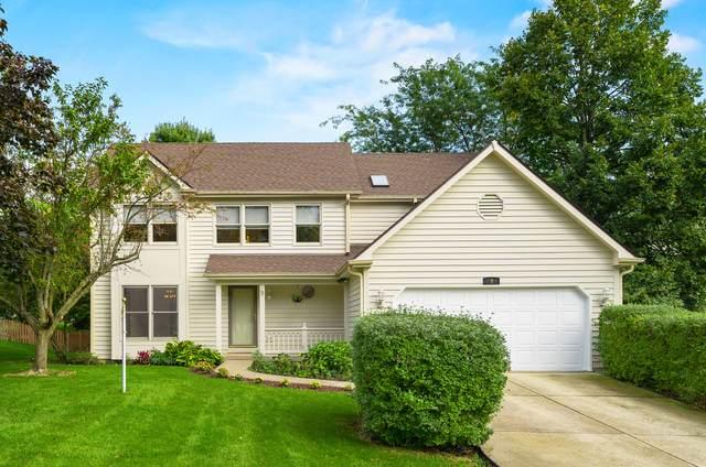 9 Briargate Circle, Sugar Grove, IL 60554 (MLS #11242741) :: John Lyons Real Estate